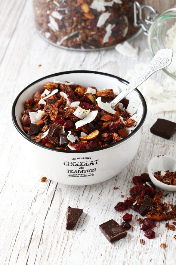 Czekoladowa granola bezglutenowa z kokosem i żurawiną